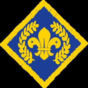 Cheif Scout Platenum